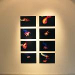 Dokumentation från Galleri Konstepidemin